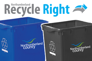 picture of new recycling bins
