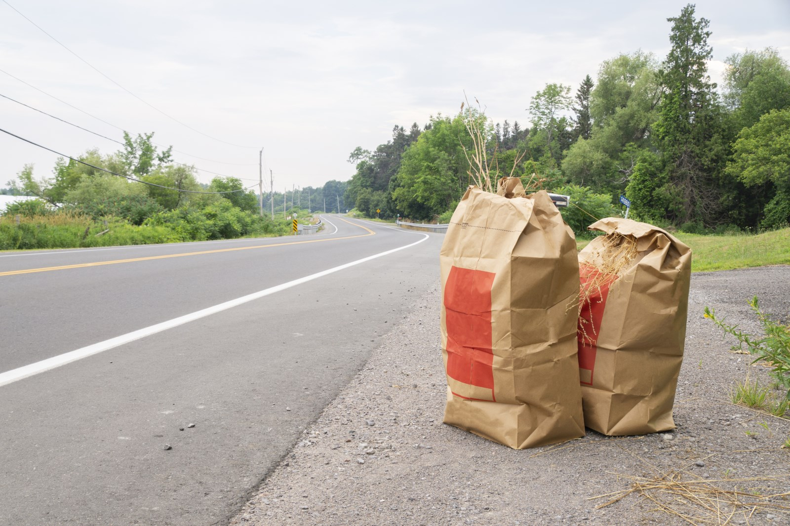 Two leaf and yard waste bags sitting on the side of the road