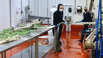 Two staff using hoses to clean floor of production area