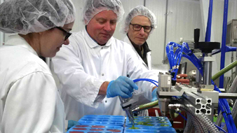 Three staff wearing gloves, lab coats & hair nets filling food containers